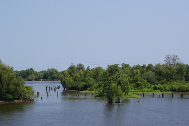 Lake Pelba Louisana Swamp on I10